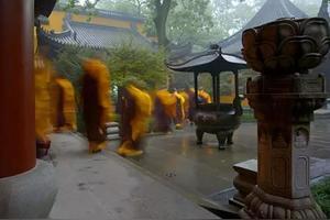 学佛和佛学是一回事吗?信佛和信仰佛教是一回事吗