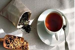 桑寄生茶的功效与作用及禁忌症