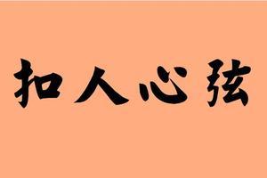 最后一个字是书的四字成语
