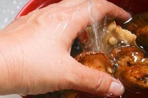 重阳菌怎样保存才新鲜,我准备过年的时候吃,但是快过季了谢谢