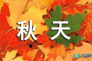 秋天的景色描写二字词语有哪些