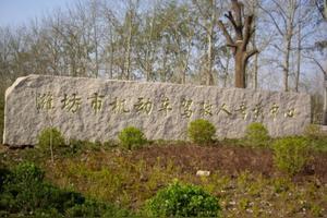 在潍坊昌乐五图考完科目四是不是可以直接拿本?