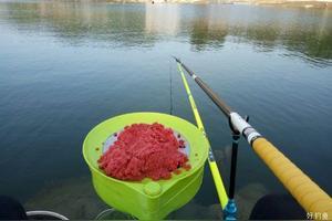 钓友好,能推荐一款8.1米的鱼竿吗?稍硬点儿的,能钓个10斤左右的就行