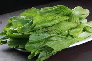 荷兰猪能吃芥菜吗,就是大叶子的那种