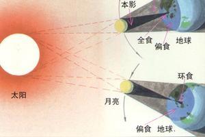 生活中哪些现象能说明光是沿直线传播