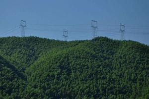 高压电线是怎样翻山越岭架上去的