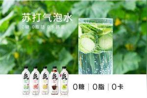 喝元气森林苏打水能减肥吗