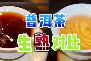 普洱生茶和熟茶的功效差别在哪里啊?