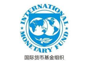 国际货币基金平价