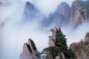 形容山顶风景美的成语
