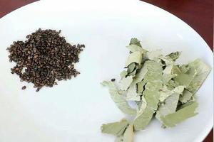 喝什么茶能使便秘得到缓解?