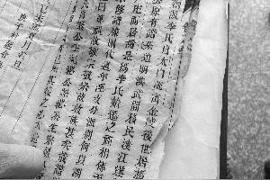 唐代大文豪的李白的职业