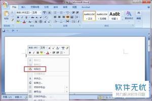 word2007中复制时如何只复制格式而不复制文字