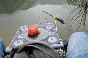 目前钓鱼用的是什么饵料?