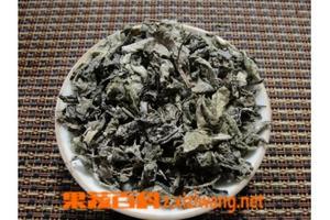 七黄草茶叶(七黄草药效)