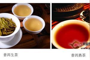 生普洱茶和熟普洱茶哪个减肥效果好
