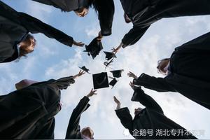 自考本科拿到学士学位然后去日本留学可行吗