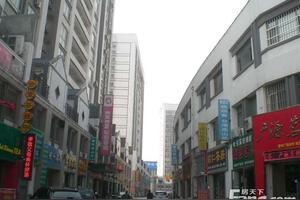 山东茶叶城
