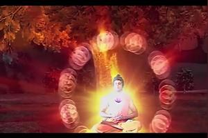 有人说佛教起源于中国,成长于印度,这一说说法对么