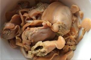 河蚌和什么不能一起吃